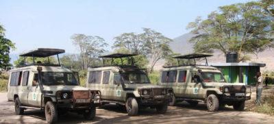Three safari cars in the field