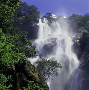 Waterfall in Udzungwa