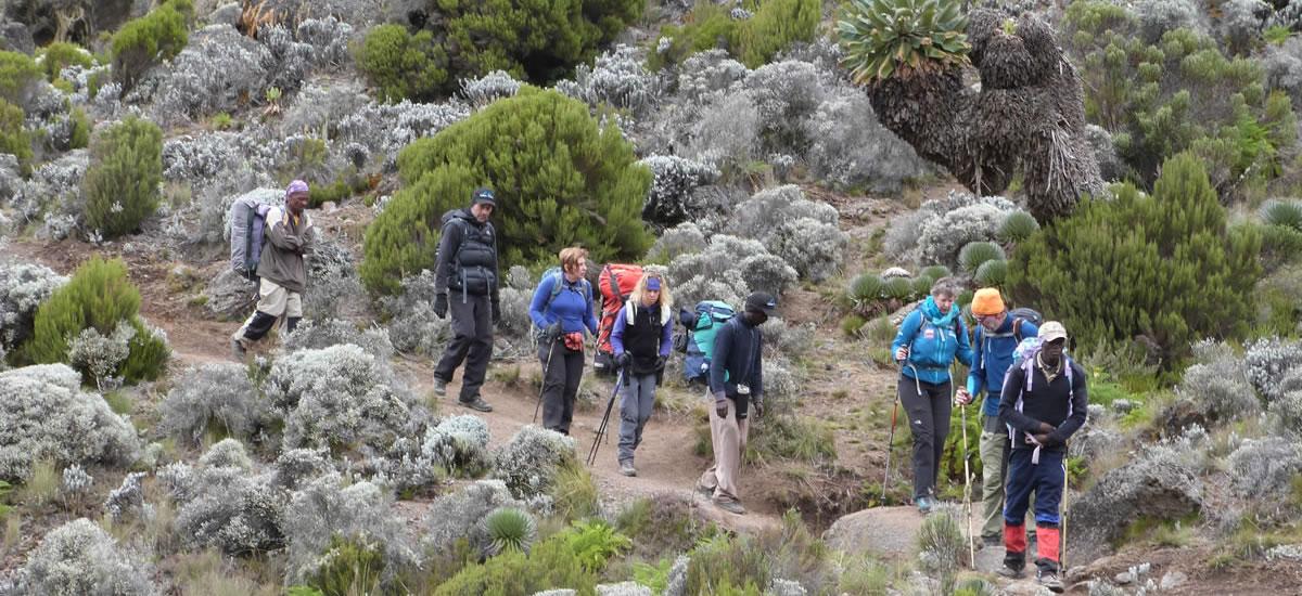 tripslider.kilimanjaro (1)