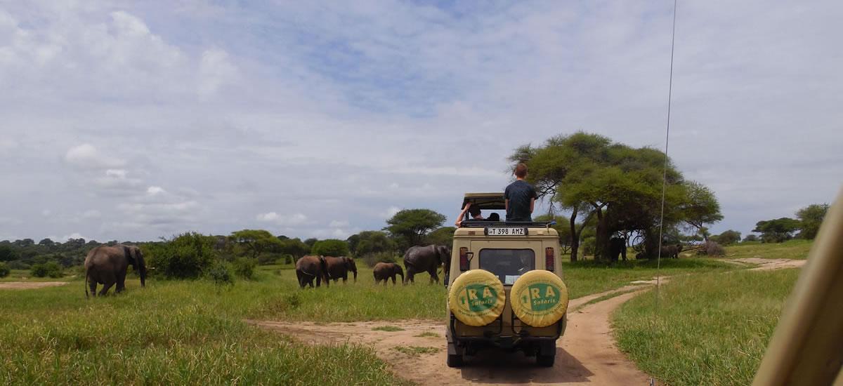 tripslider.safari (10)