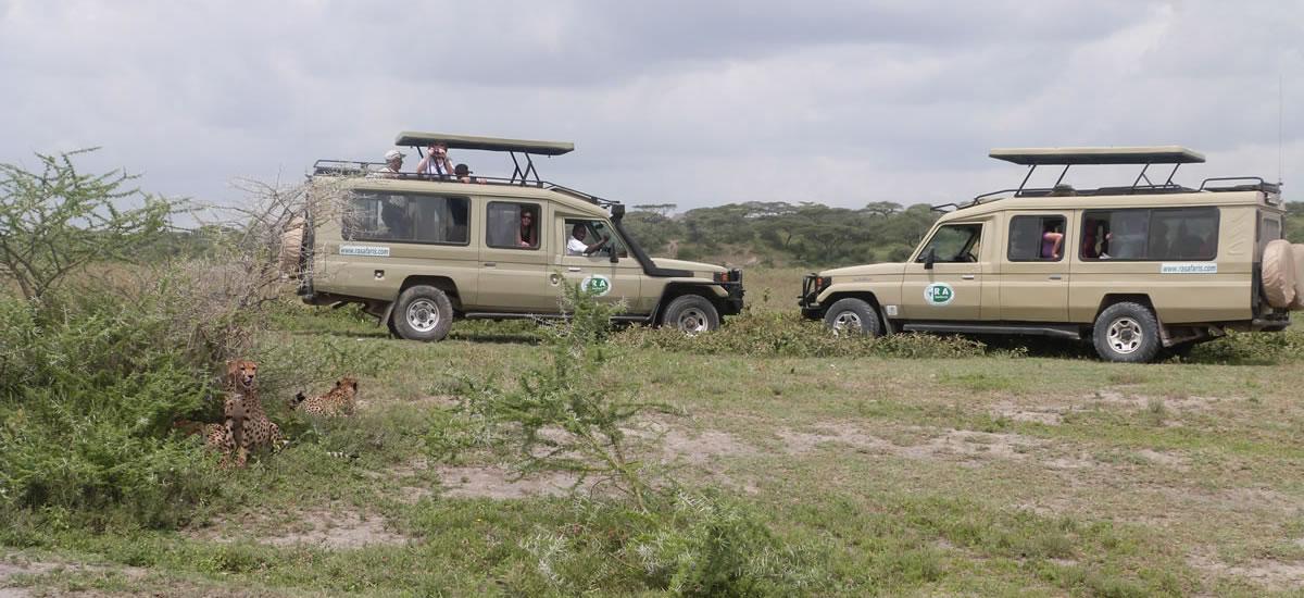 tripslider.safari (3)